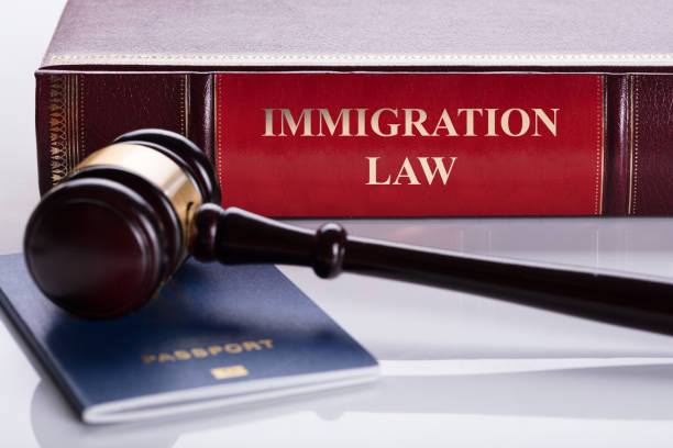 New scheme for undocumented migrants – Immigration Law
